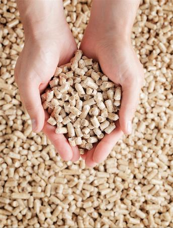 pellets granules de bois